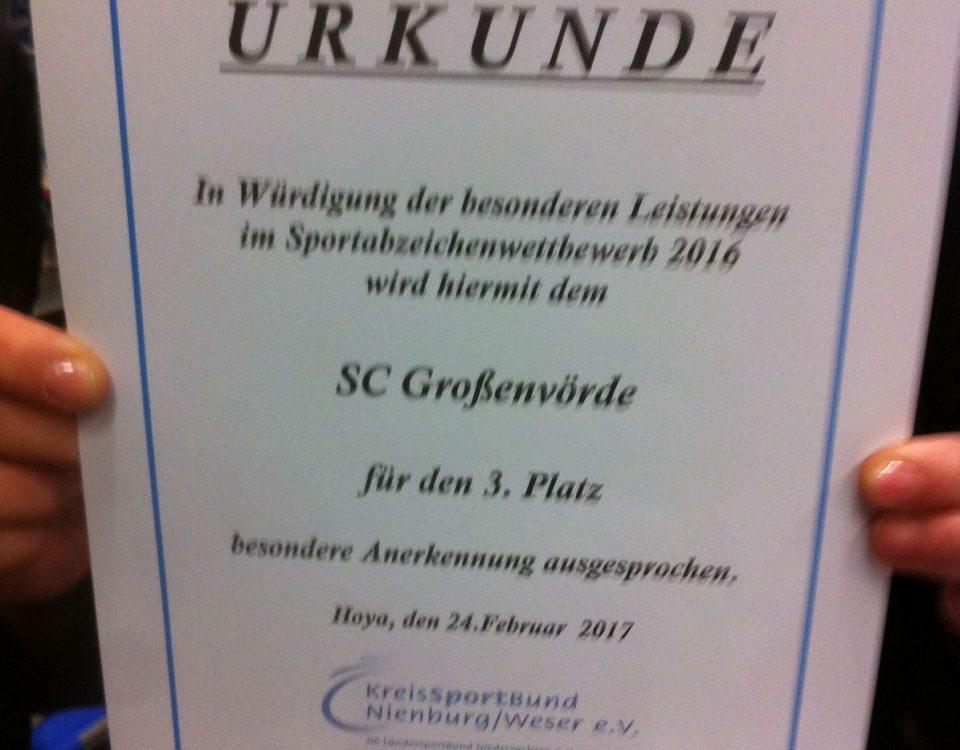 Sportabzeichen_Preis_2017
